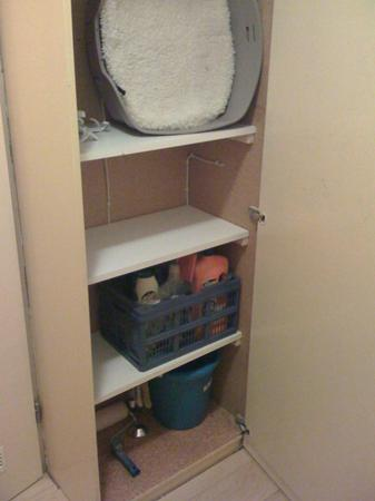 makes progress with project hall closet. Shelves! Now towels can go there instead of in tiny bathroom.